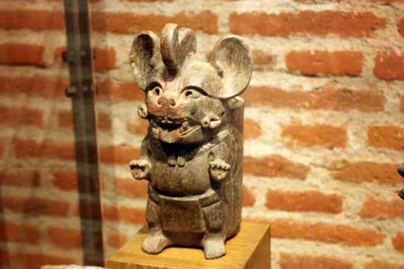 Zapotec rat