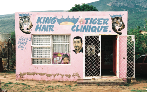 Tigerclinique