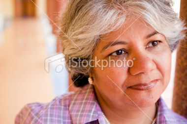 Stock-photo-14427904-modern-indian-confident-attractive-mid-aged-business-woman