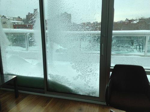 Snow2012b